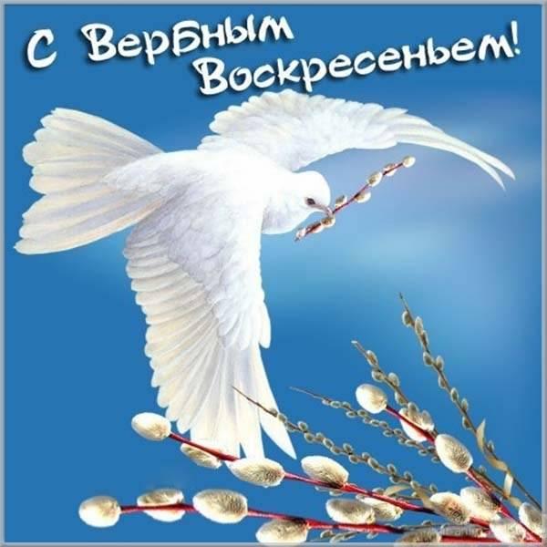 воскресенье поздравления открытки никакого изменения