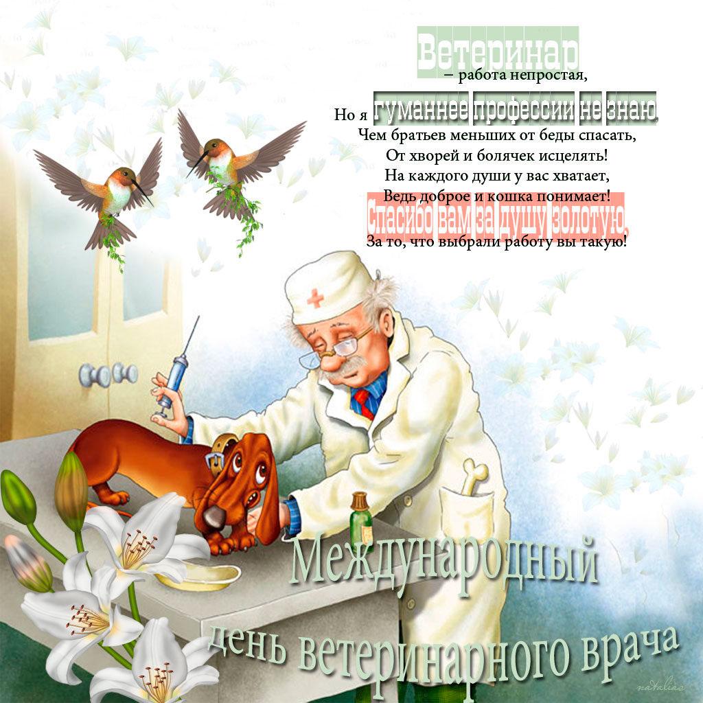 С днем ветеринара поздравления открытки