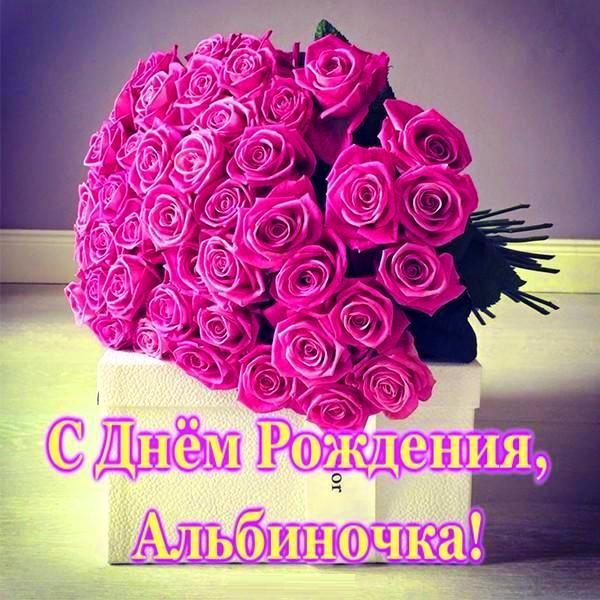 Поздравления альбине с днем рождения