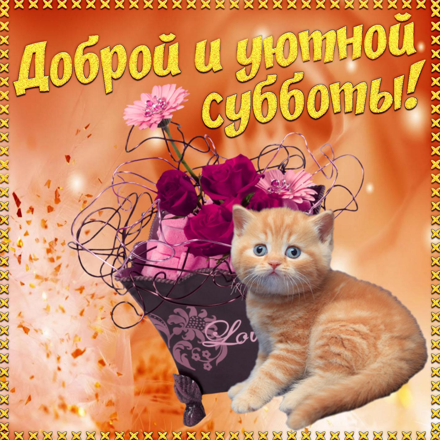 открытки с субботним утром и хорошего дня дня