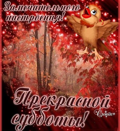 открытка с хорошим субботним днем фотографии фотоальбомах