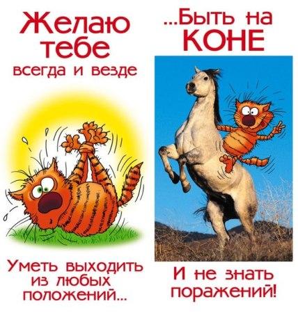http://pozdravik.com/prikol-birthday/90.jpg