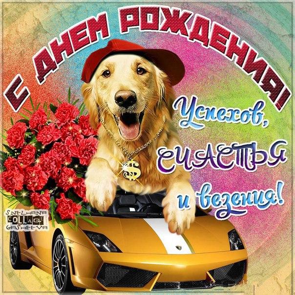 Прикольные и смешные поздравления с Днем рождения Алексею 20